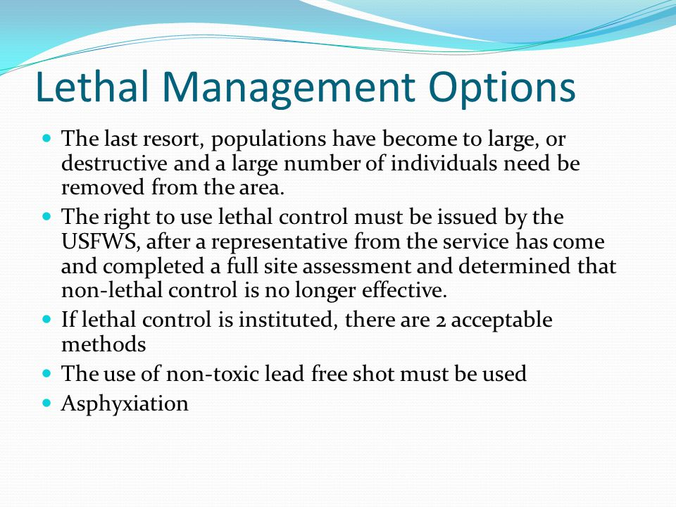 Lethal Management Options The last resort, populations have become to large, or destructive and a large number of individuals need be removed from the