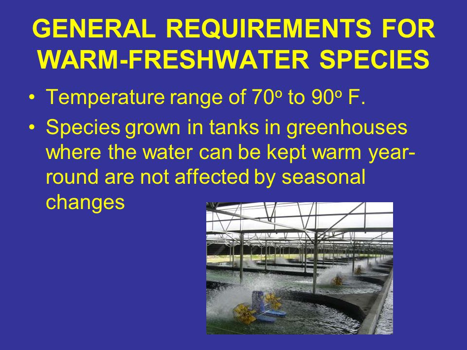 GENERAL REQUIREMENTS FOR WARM-FRESHWATER SPECIES Temperature range of 70 o to 90 o F. Species grown in tanks in greenhouses where the water can be kep