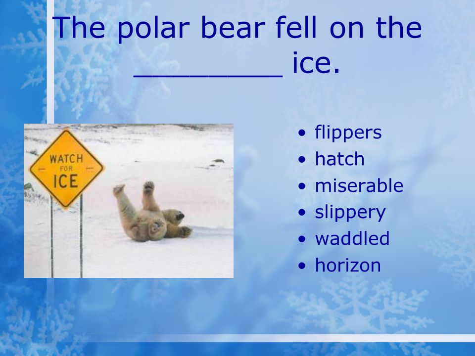 The polar bear fell on the ________ ice. flippers hatch miserable slippery waddled horizon