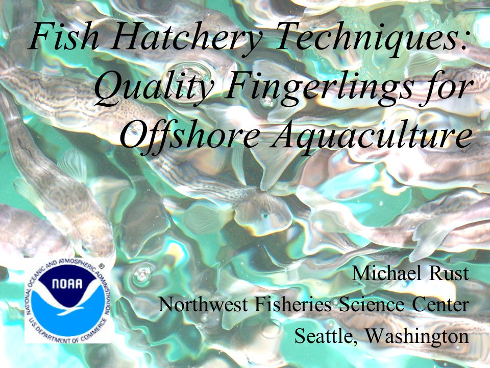 Fish Hatchery Techniques: Quality Fingerlings for Offshore Aquaculture Michael Rust Northwest Fisheries Science Center Seattle, Washington