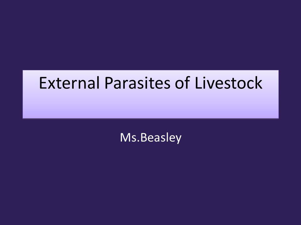 External Parasites of Livestock Ms.Beasley