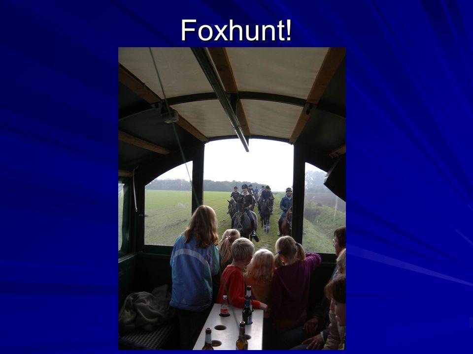 Foxhunt!