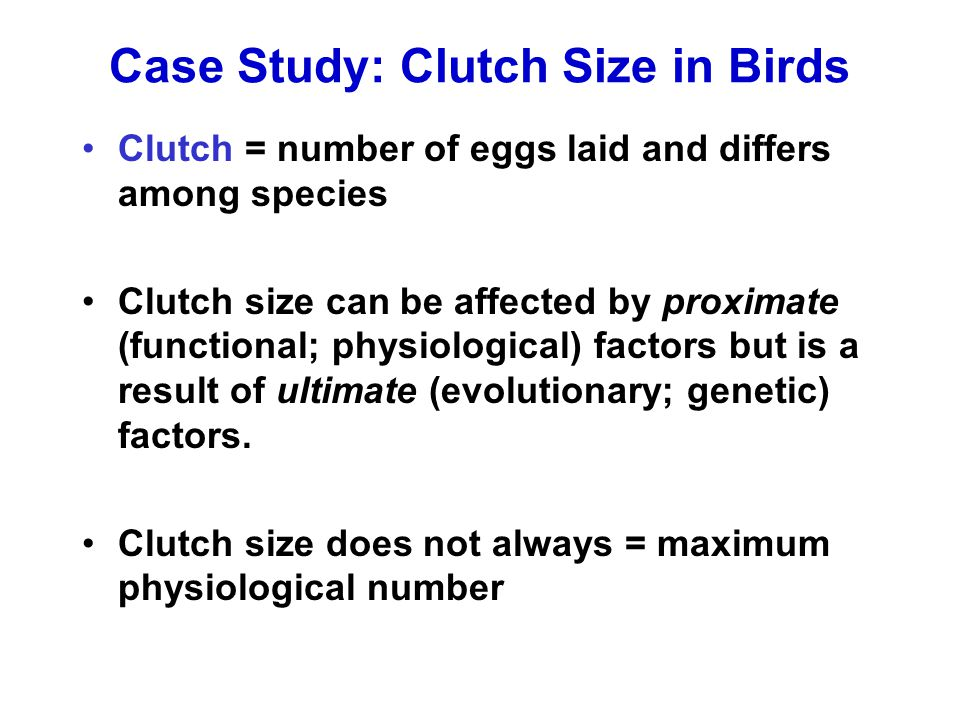 Case Study: Clutch Size in Birds Clutch = number of eggs laid and differs among species Clutch size can be affected by proximate (functional; physiolo