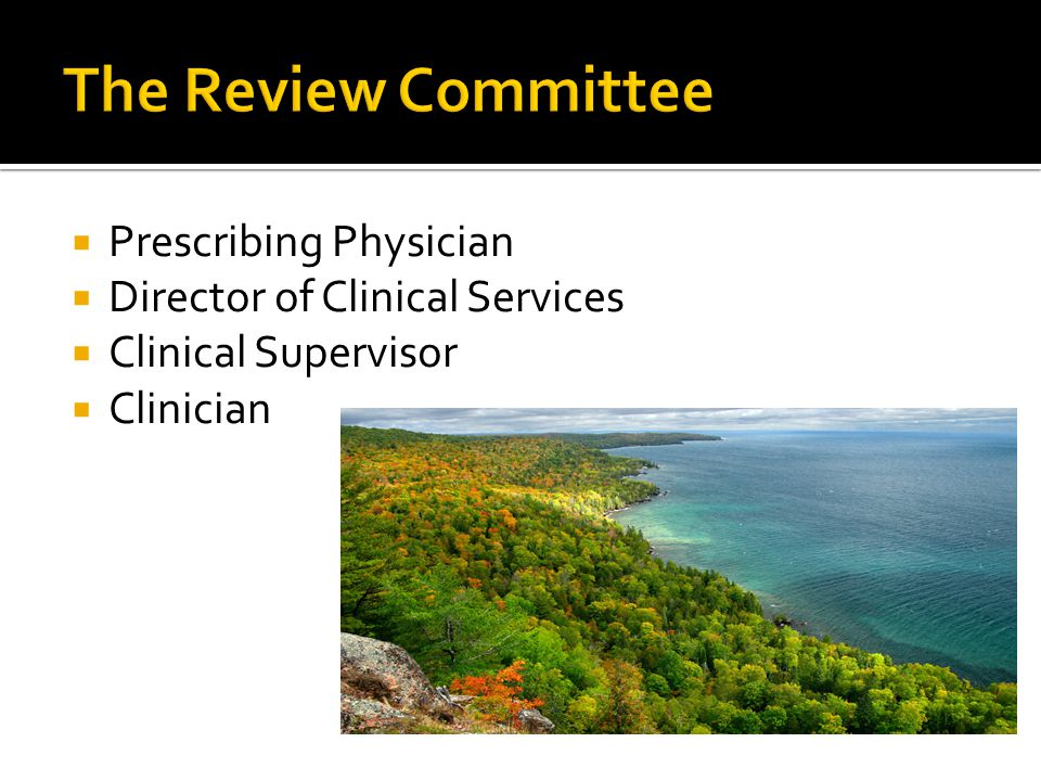  Prescribing Physician  Director of Clinical Services  Clinical Supervisor  Clinician