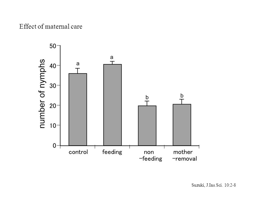 Suzuki, J.Ins.Sci. 10:2-8 Effect of maternal care