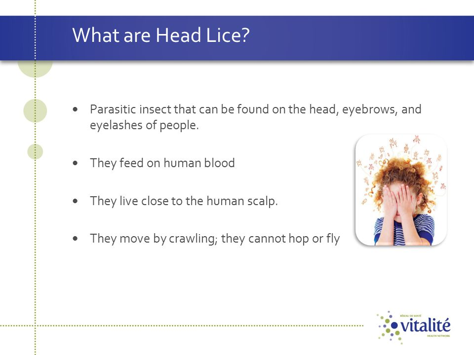 Responsibility of the Control of Head Lice The primary responsibility for the identification, treatment and prevention of head lice in a family has to lie with the parents, if only for reasons of practicality.