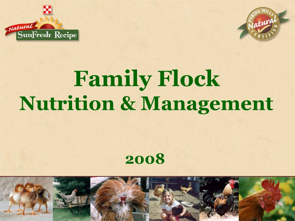 Family Flock Nutrition & Management 2008