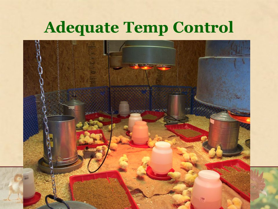 Adequate Temp Control