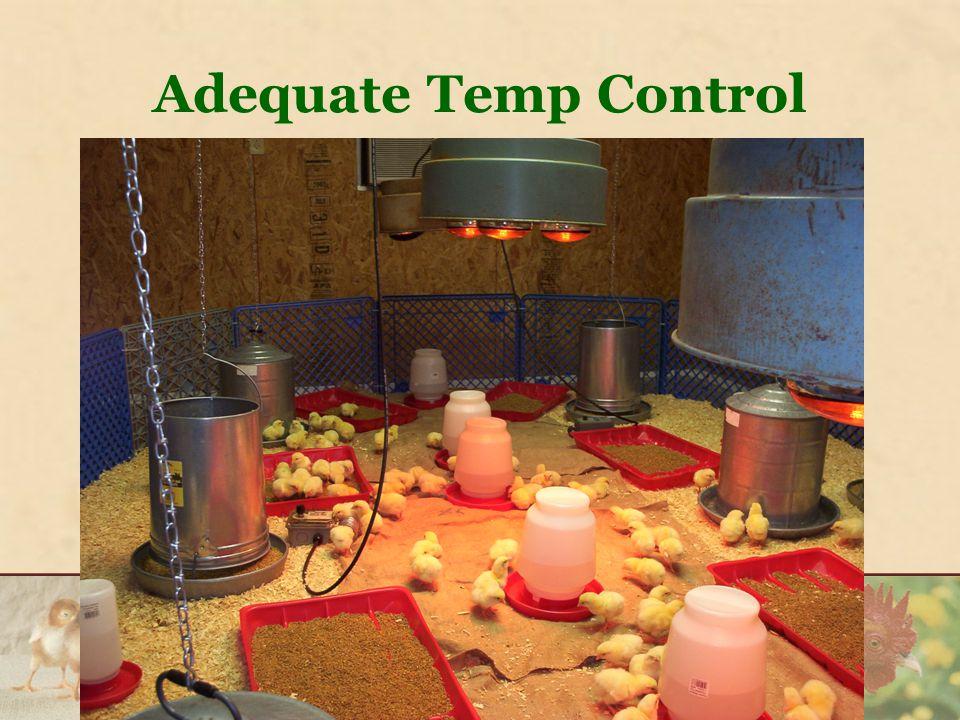 Adequate Temp Control