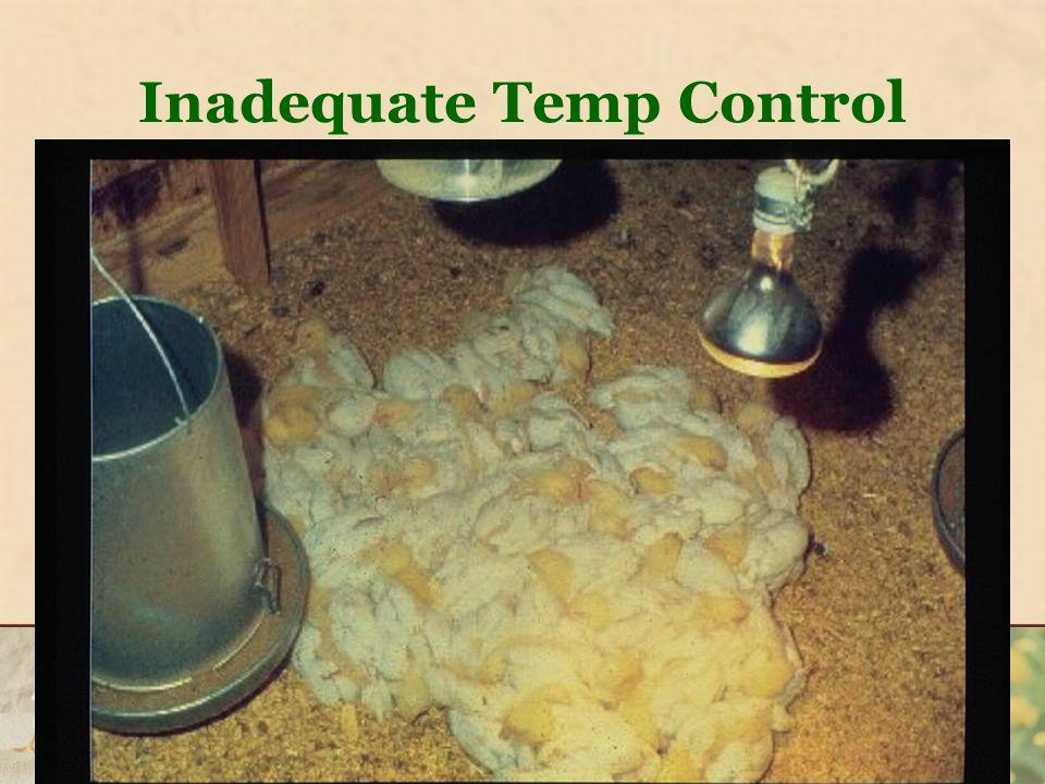 Inadequate Temp Control