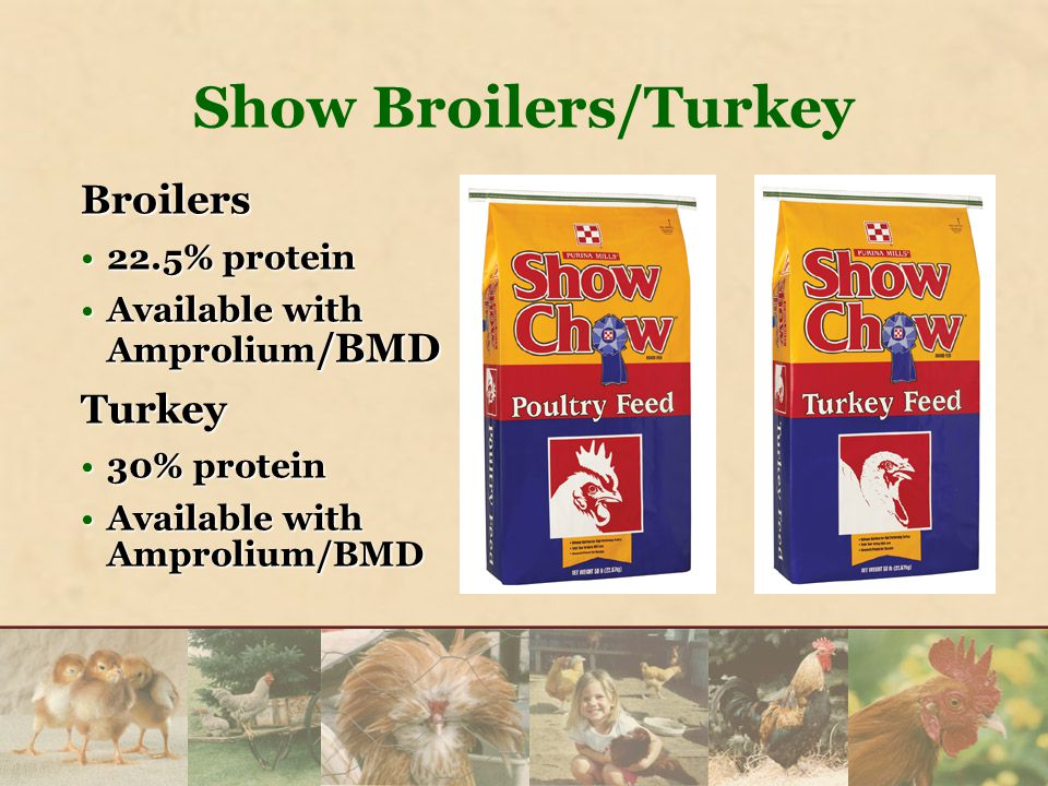 Broilers 22.5% protein22.5% protein Available with Amprolium /BMDAvailable with Amprolium /BMDTurkey 30% protein30% protein Available with Amprolium/BMDAvailable with Amprolium/BMD Show Broilers/Turkey