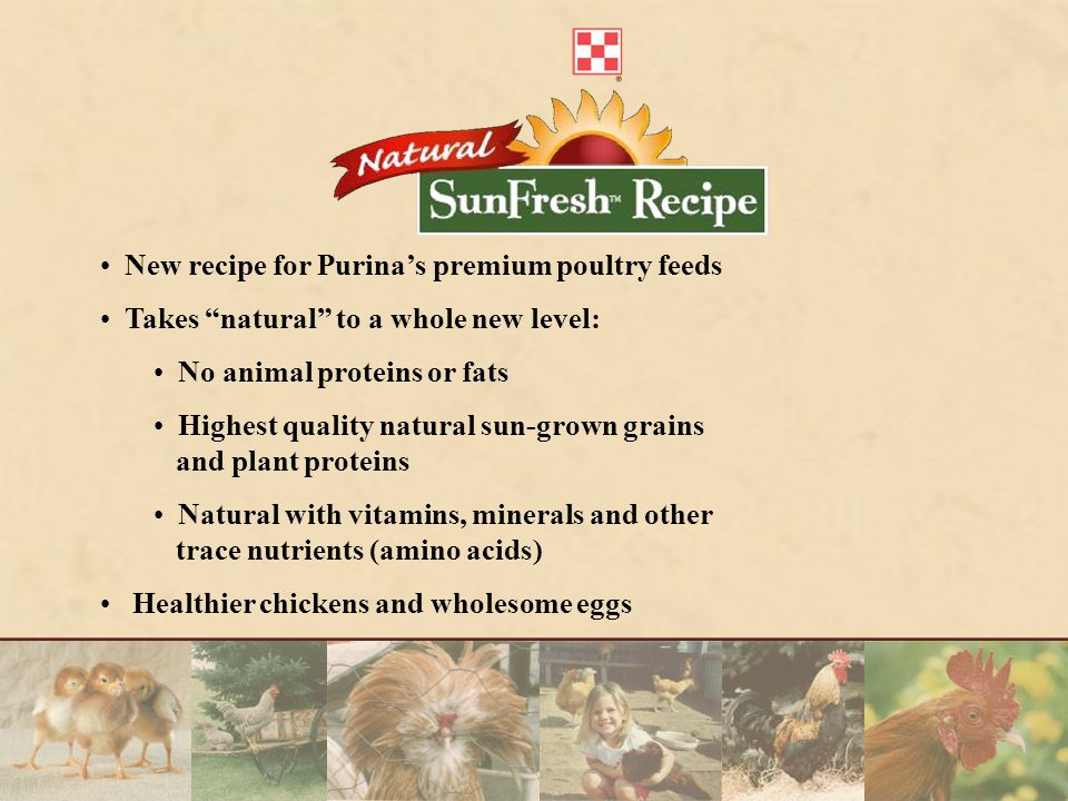 New recipe for Purina's premium poultry feeds Takes natural to a whole new level: No animal proteins or fats Highest quality natural sun-grown grains and plant proteins Natural with vitamins, minerals and other trace nutrients (amino acids) Healthier chickens and wholesome eggs
