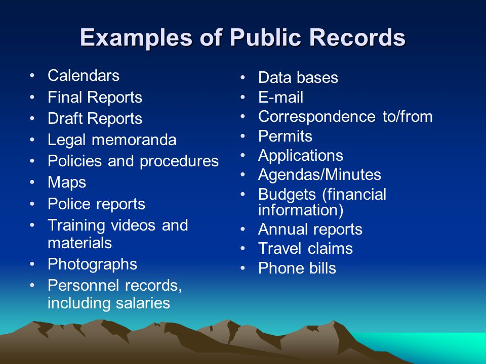 Examples of Public Records Calendars Final Reports Draft Reports Legal memoranda Policies and procedures Maps Police reports Training videos and mater