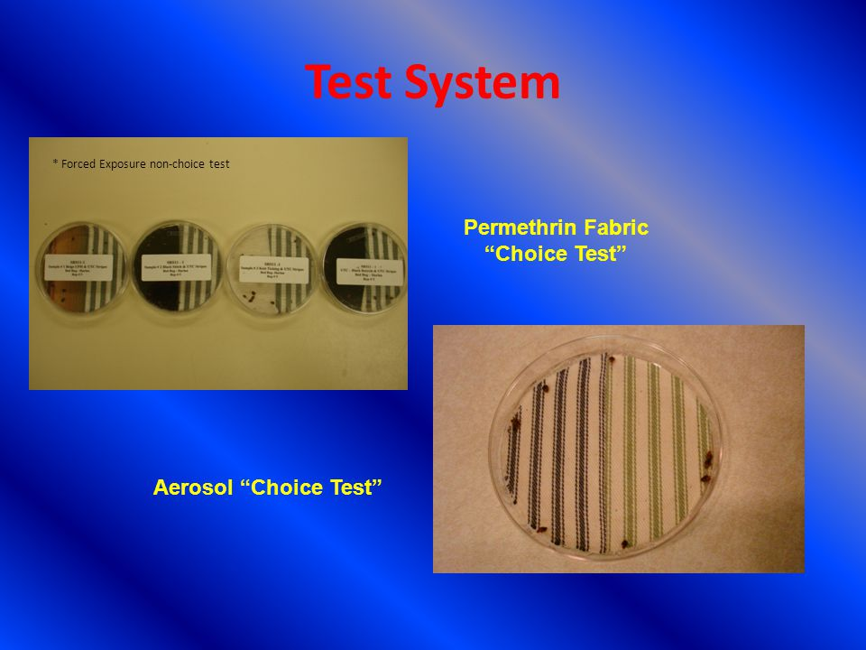 Test System * Forced Exposure non-choice test Aerosol Choice Test Permethrin Fabric Choice Test