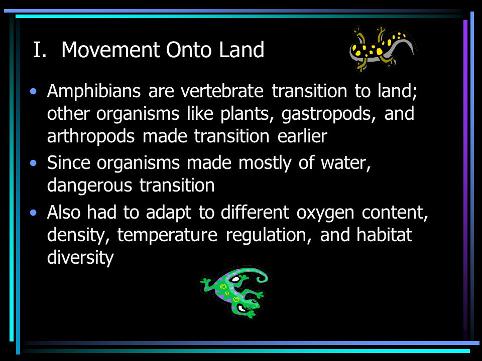 I. Movement Onto Land Amphibians are vertebrate transition to land; other organisms like plants, gastropods, and arthropods made transition earlier Si