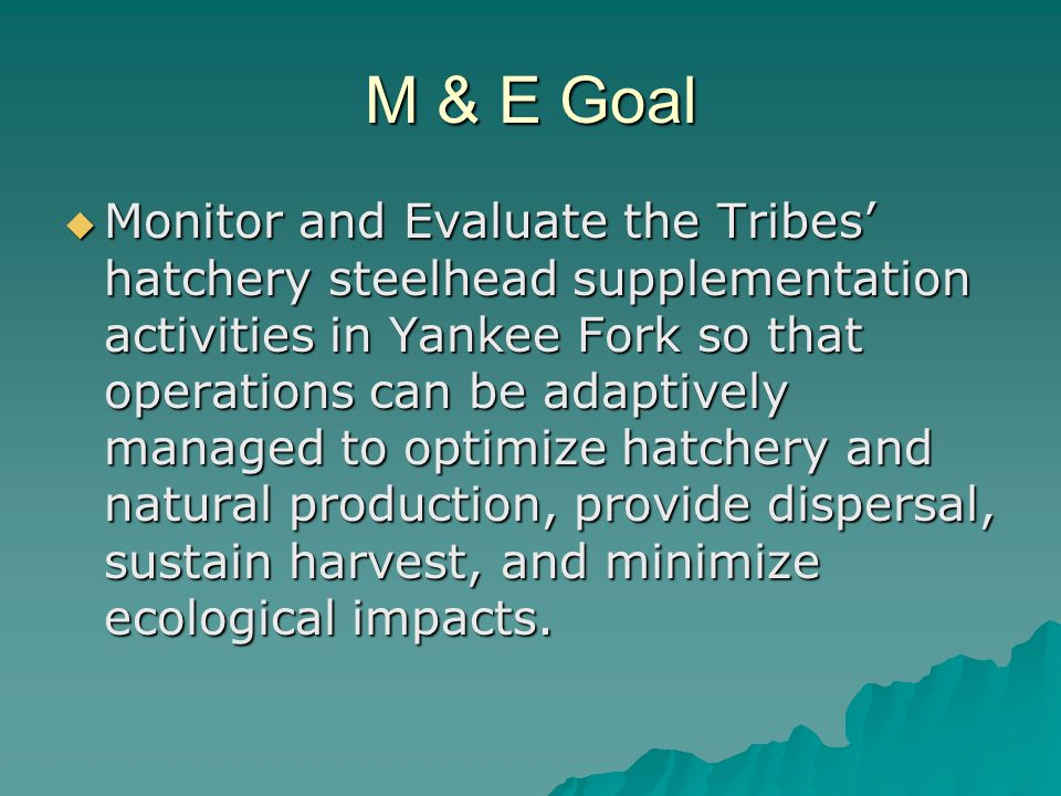 M & E Goal  Monitor and Evaluate the Tribes' hatchery steelhead supplementation activities in Yankee Fork so that operations can be adaptively managed to optimize hatchery and natural production, provide dispersal, sustain harvest, and minimize ecological impacts.