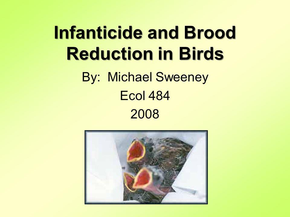 Infanticide.Infanticide very common in birds.