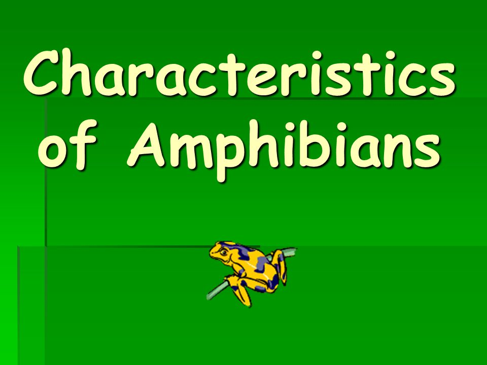 Amphibians are cold-blooded, which means their blood temperature rises and falls with that of the surrounding environment 