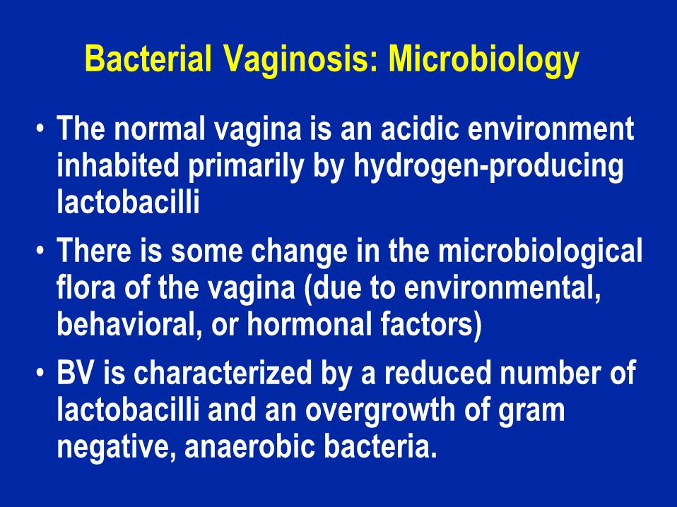 Bacterial Vaginosis: Microbiology Anaerobic organisms in BV include: Mycoplasma hominis, Bacteroides spp., Mobiluncus spp., Gardnerella vaginalis.