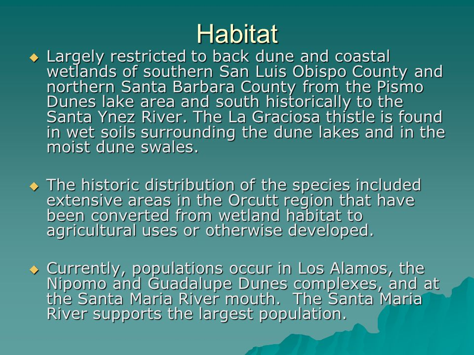 Habitat  Largely restricted to back dune and coastal wetlands of southern San Luis Obispo County and northern Santa Barbara County from the Pismo Dun