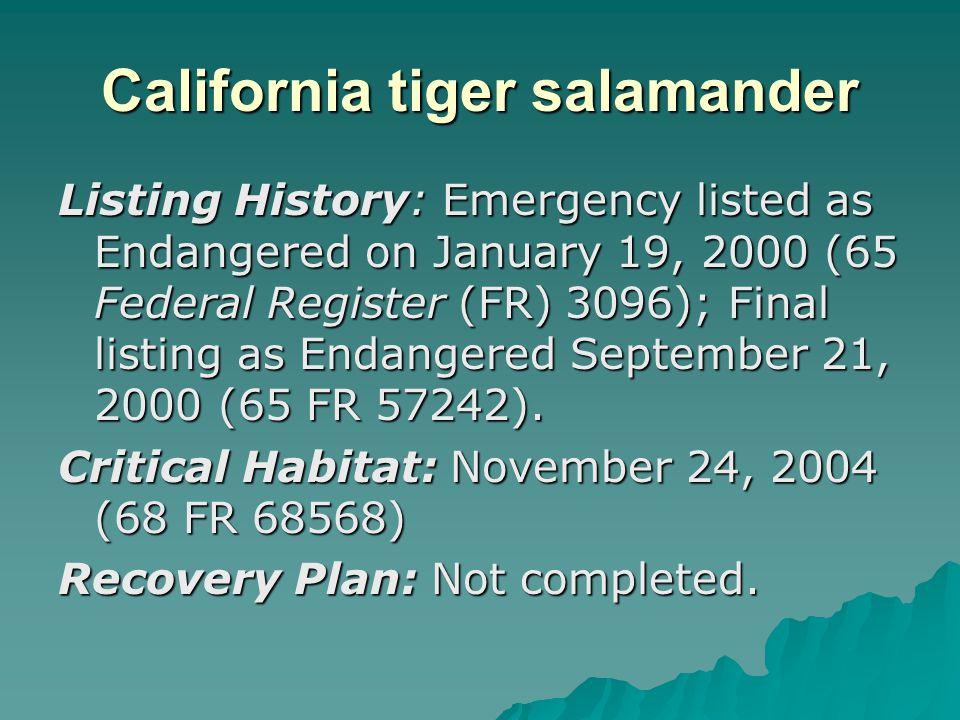 California tiger salamander Listing History: Emergency listed as Endangered on January 19, 2000 (65 Federal Register (FR) 3096); Final listing as Enda