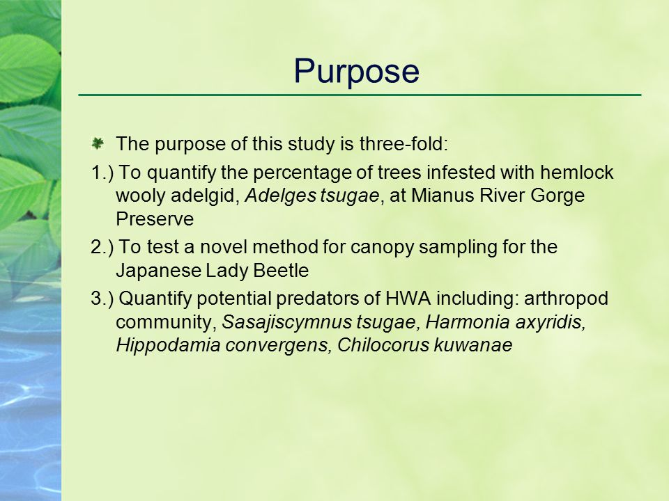 Purpose The purpose of this study is three-fold: 1.) To quantify the percentage of trees infested with hemlock wooly adelgid, Adelges tsugae, at Mianus River Gorge Preserve 2.) To test a novel method for canopy sampling for the Japanese Lady Beetle 3.) Quantify potential predators of HWA including: arthropod community, Sasajiscymnus tsugae, Harmonia axyridis, Hippodamia convergens, Chilocorus kuwanae