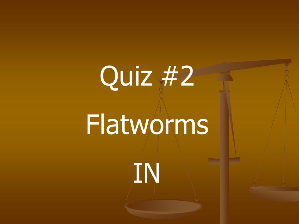 Quiz #2 Flatworms IN
