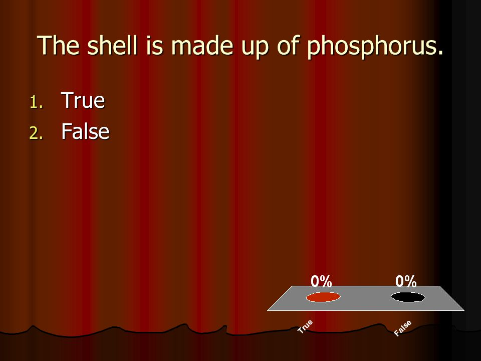 The shell is made up of phosphorus. 1. True 2. False