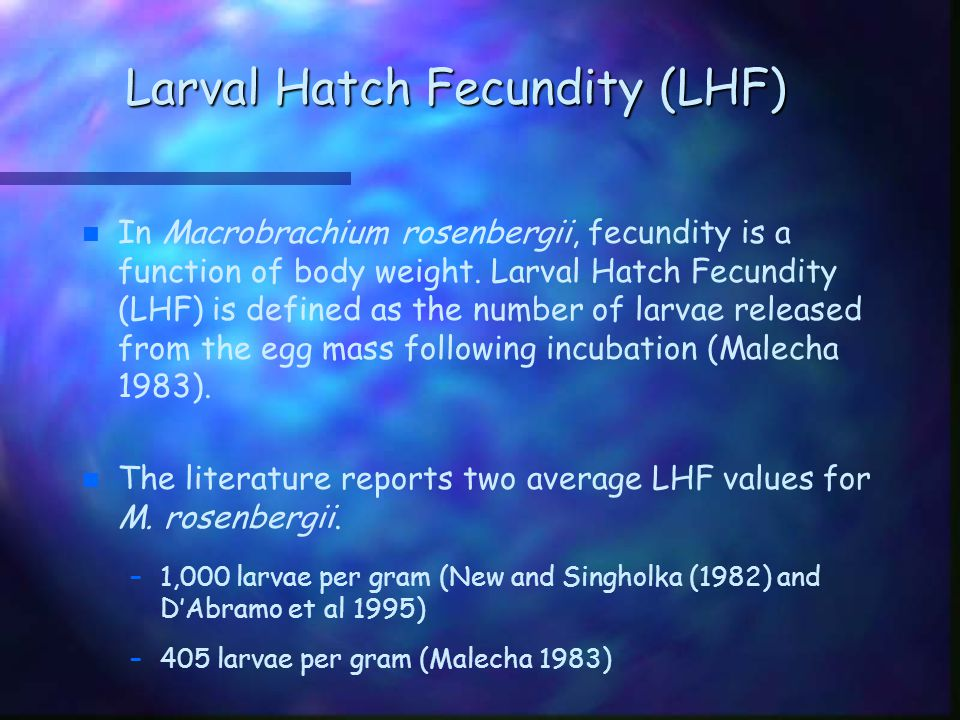 Purpose of Study n n The purpose of this study is to determine the larval hatch fecundity of one stock of M.