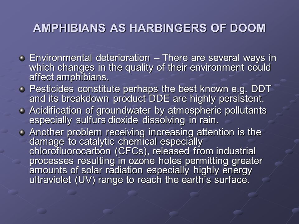 AMPHIBIANS AS HARBINGERS OF DOOM Environmental deterioration – There are several ways in which changes in the quality of their environment could affec