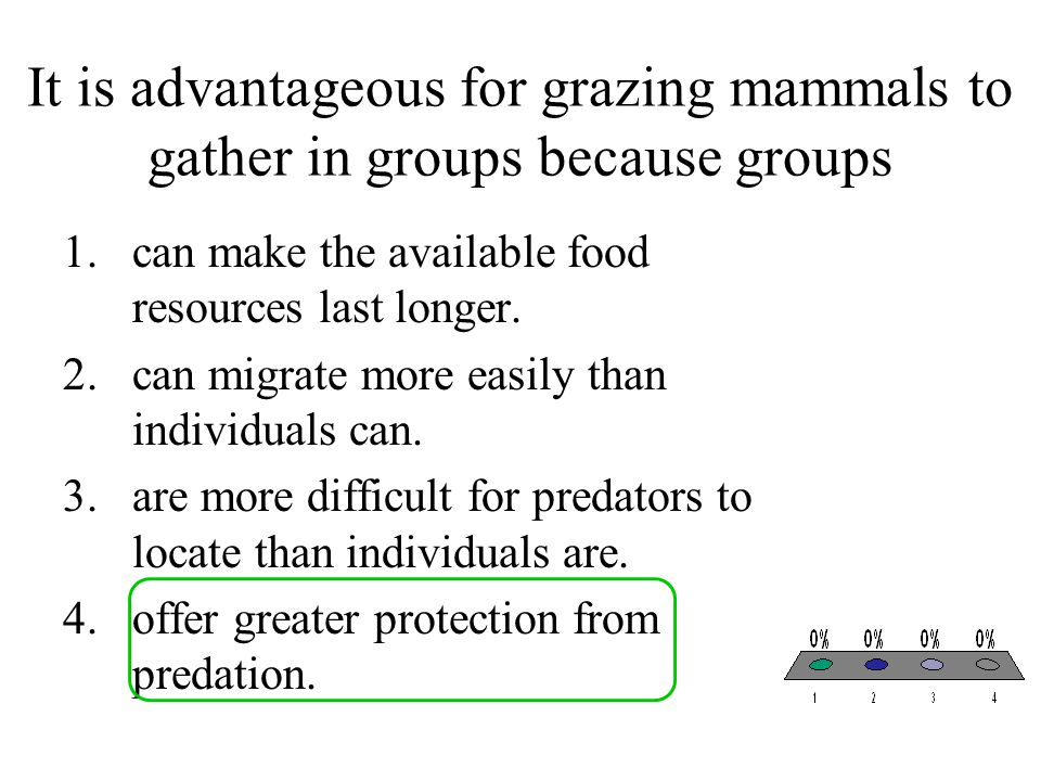 It is advantageous for grazing mammals to gather in groups because groups 1.can make the available food resources last longer. 2.can migrate more easi