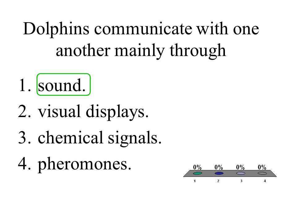 Dolphins communicate with one another mainly through 1.sound. 2.visual displays. 3.chemical signals. 4.pheromones.