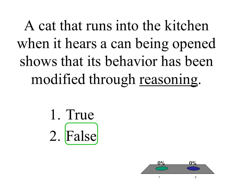 A cat that runs into the kitchen when it hears a can being opened shows that its behavior has been modified through reasoning. 1.True 2.False