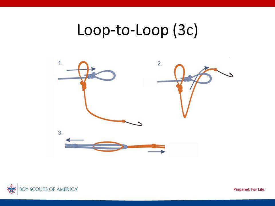Loop-to-Loop (3c)