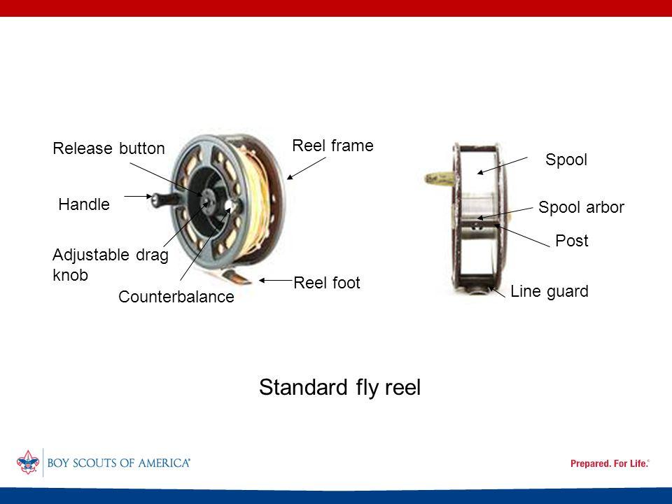 Reel foot Standard fly reel Handle Adjustable drag knob Release button Spool Spool arbor Post Line guard Reel frame Counterbalance