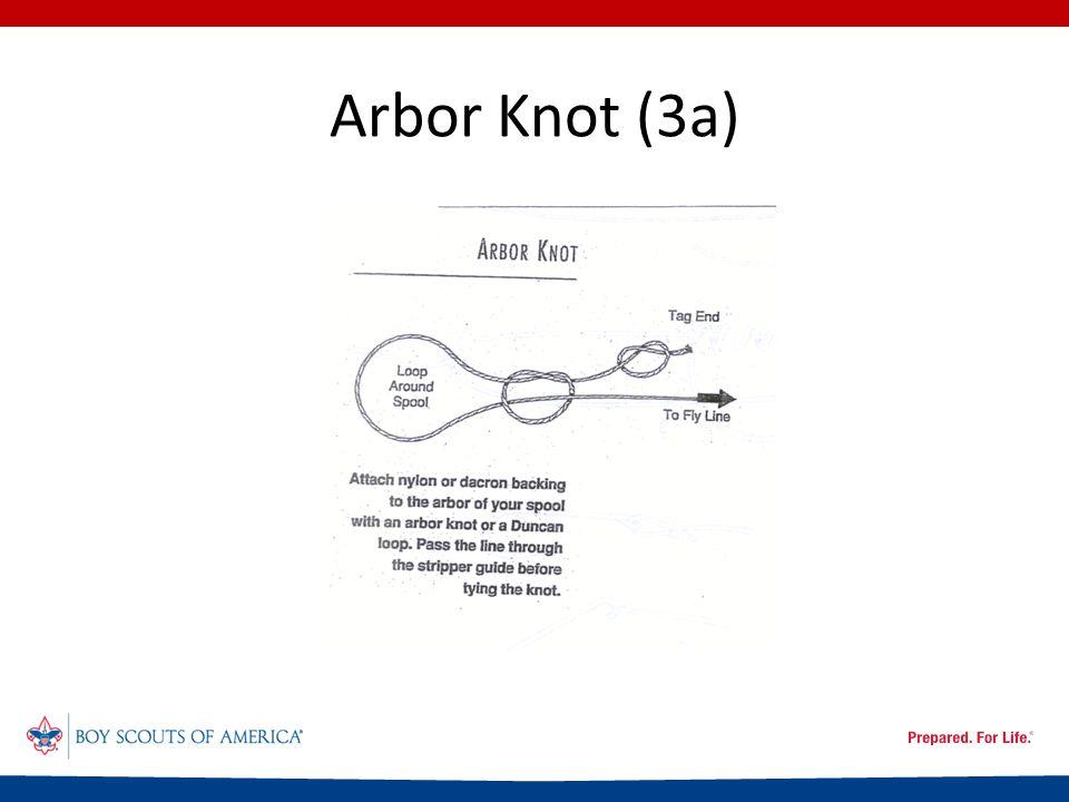 Arbor Knot (3a)