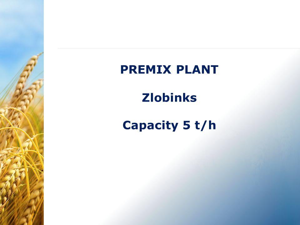 PREMIX PLANT Zlobinks Capacity 5 t/h
