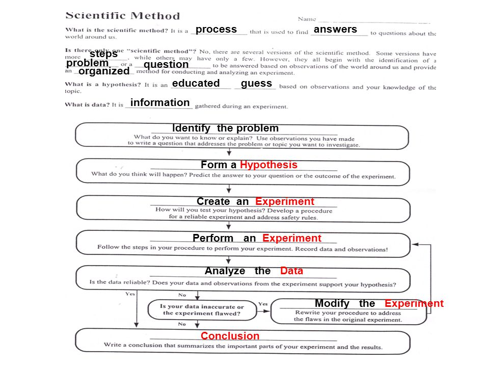 Printables Scientific Method Worksheet Answers printables science and the scientific method worksheet answer key spot answers intrepidpath