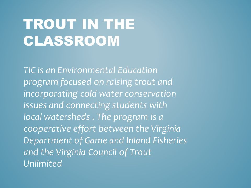 TROUT IN THE CLASSROOM TIC is an Environmental Education program focused on raising trout and incorporating cold water conservation issues and connecting students with local watersheds.