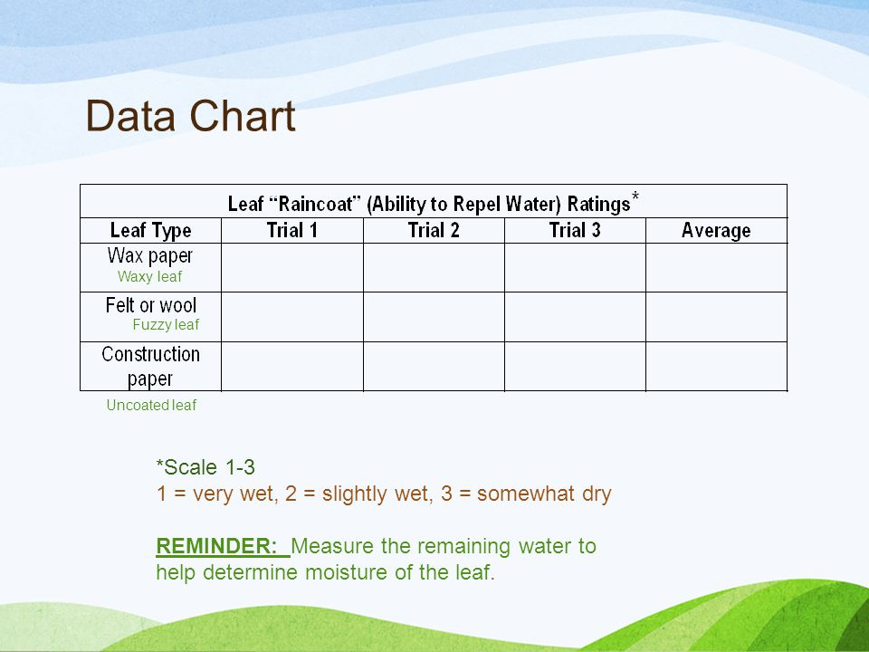 Data Chart *Scale 1-3 1 = very wet, 2 = slightly wet, 3 = somewhat dry REMINDER: Measure the remaining water to help determine moisture of the leaf.