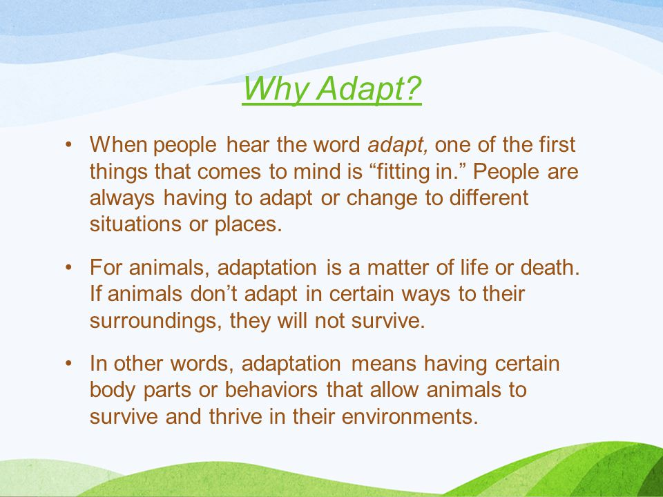 """Why Adapt? When people hear the word adapt, one of the first things that comes to mind is """"fitting in."""" People are always having to adapt or change to"""