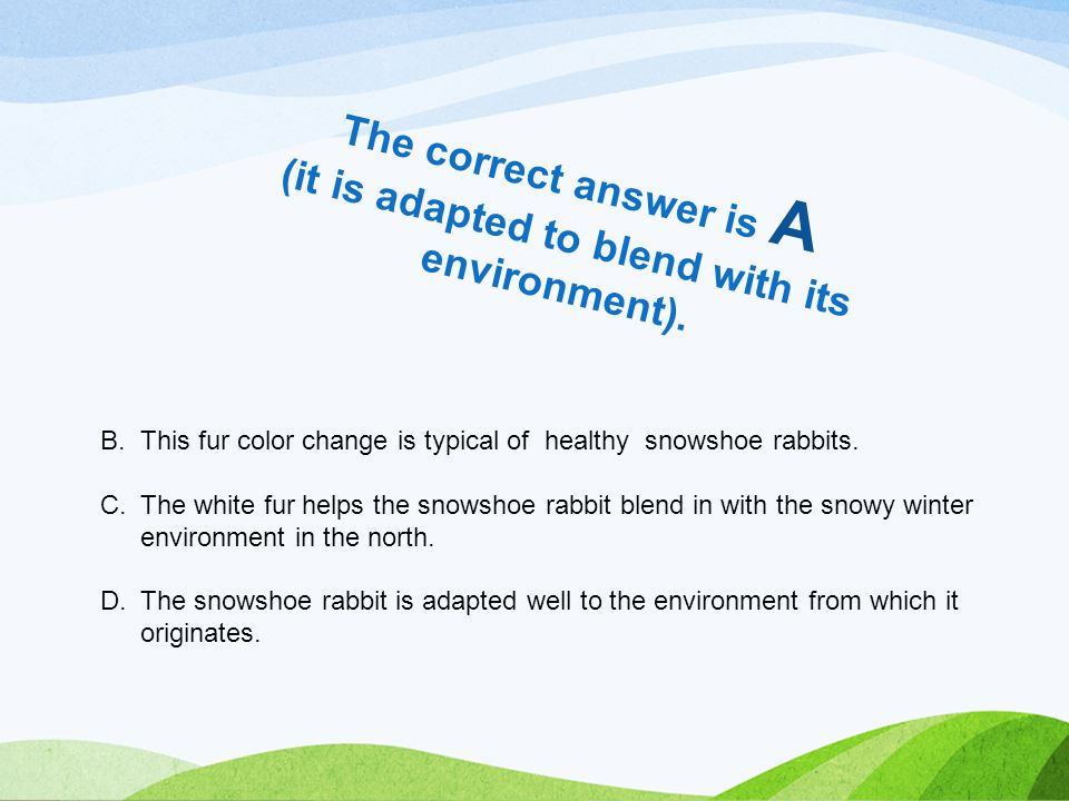 The correct answer is A (it is adapted to blend with its environment).