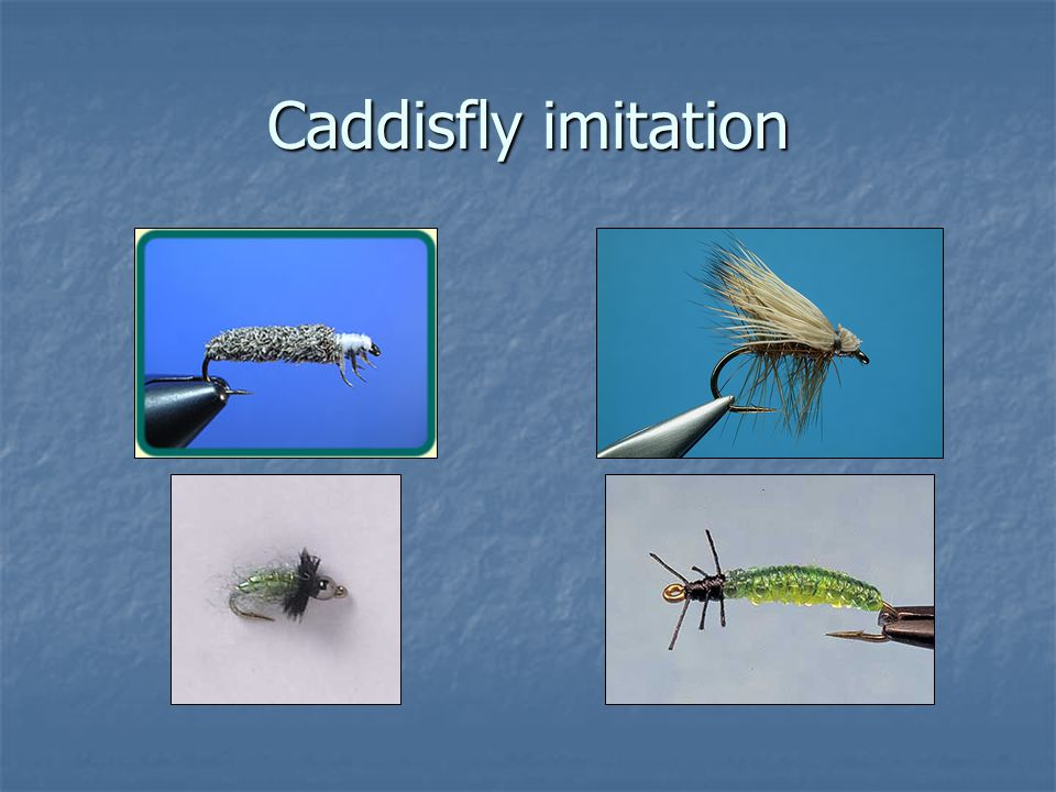 Caddisfly imitation