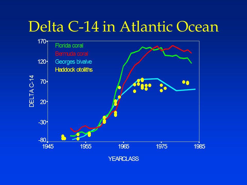 Delta C-14 in Atlantic Ocean YEARCLASS 19851975196519551945 D E L T A C - 1 4 170 120 70 20 -30 -80 Florida coral Bermuda coral Georges bivalve Haddock otoliths