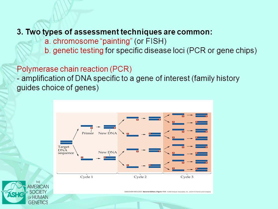 """3. Two types of assessment techniques are common: a. chromosome """"painting"""" (or FISH) b. genetic testing for specific disease loci (PCR or gene chips)"""