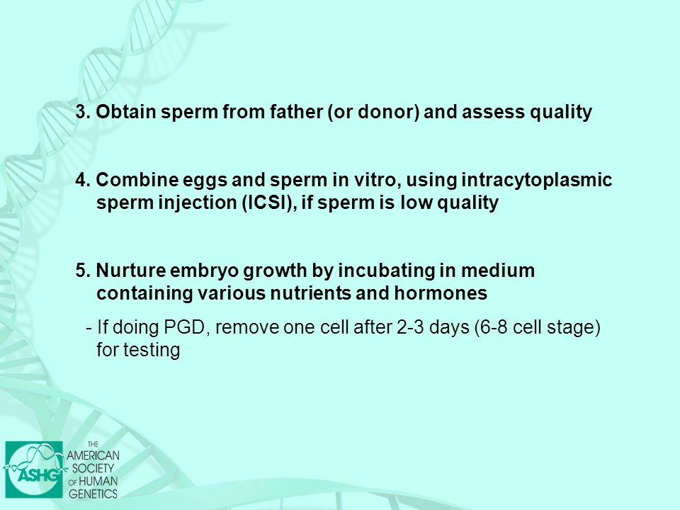 3.Obtain sperm from father (or donor) and assess quality 4.