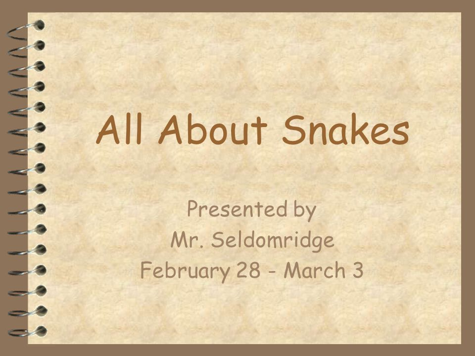 All About Snakes Presented by Mr. Seldomridge February 28 - March 3