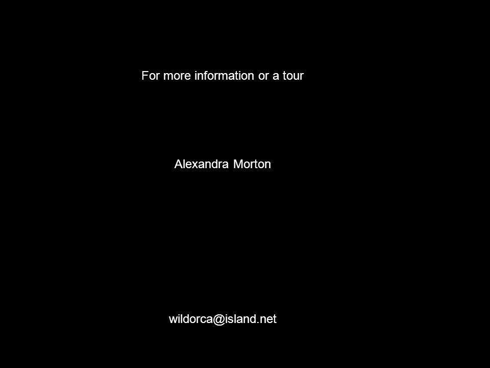 For more information or a tour Alexandra Morton wildorca@island.net