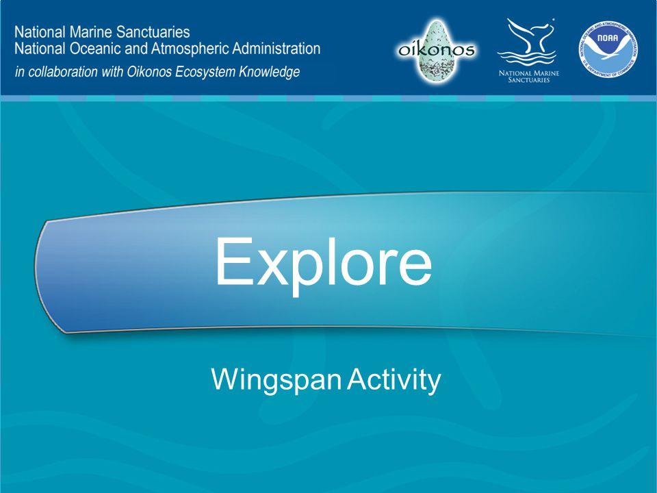Explore Wingspan Activity