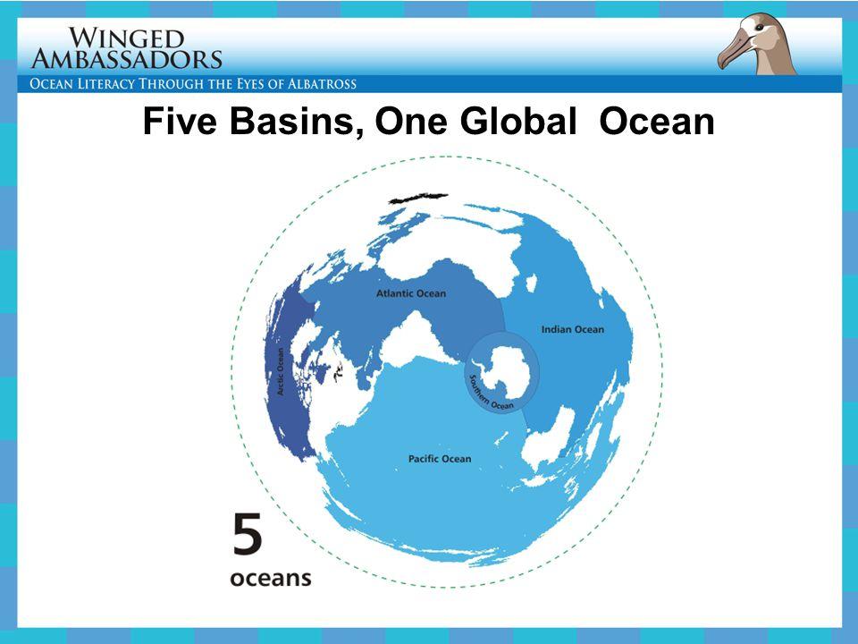 Five Basins, One Global Ocean